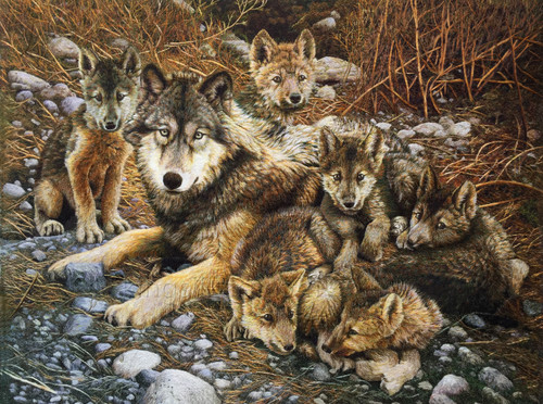 King Silk Art  Wildlife wolf family 74129