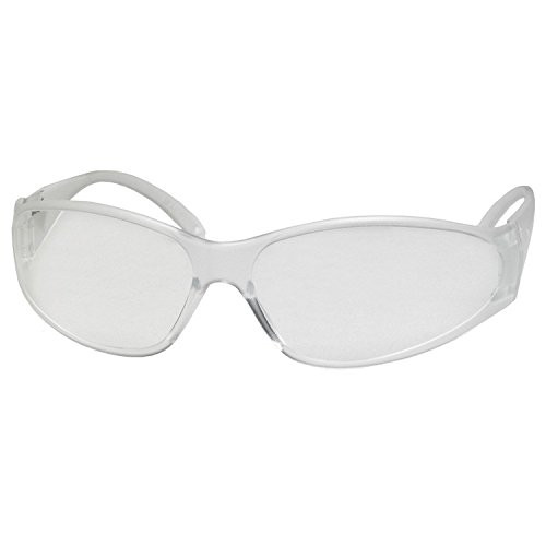 ERB Economy Boas Safety Glasses with Clear Frame and Uncoated Lens