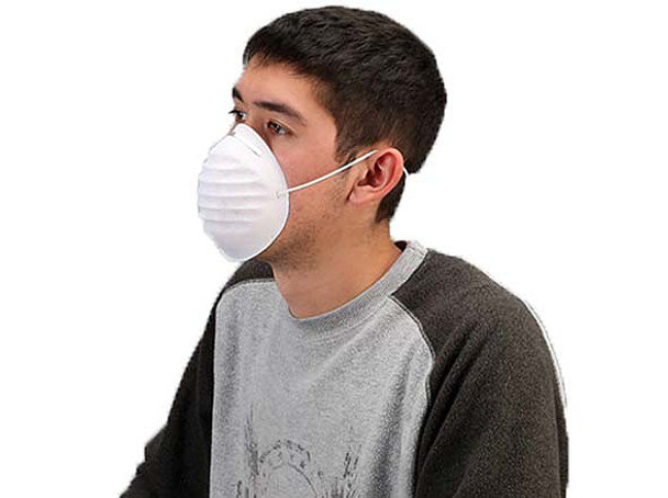 DM1 DISPOSABLE DUST MASK (BOX OF 50)