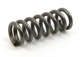 Extractor Springs