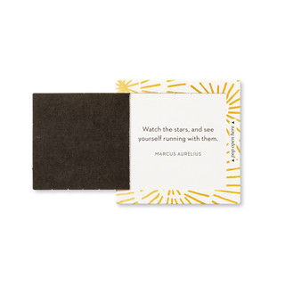 """Inside view of a pop-open card, """"Shine"""", gold burst, sunshine design, 30 pop-open cards, each with a unique message inside, backside has space to write a note"""