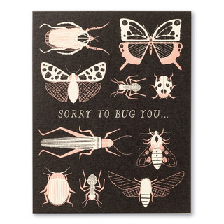 """Card front, black thank you card with illustrations of butterflies and other bugs and the statement """"Sorry to bug you…"""""""