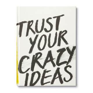 Front of Trust Your Crazy Ideas.