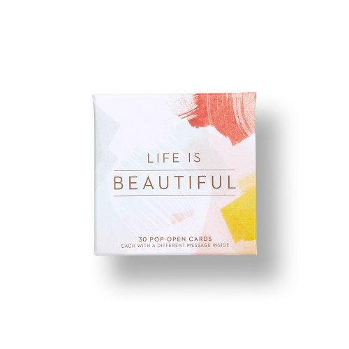 Front of Life is Beautiful box.