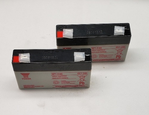 S2501027 PET Set of Batteries