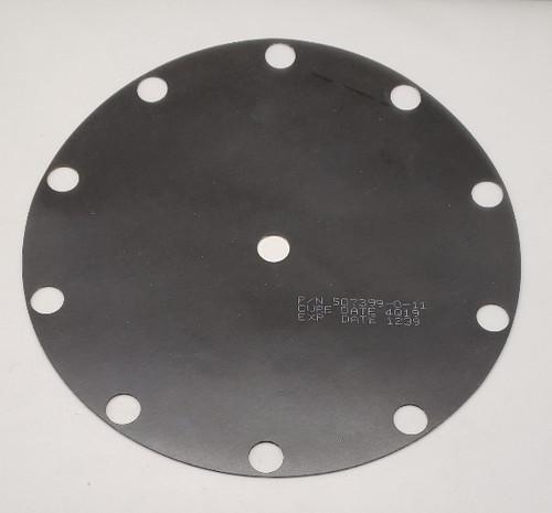 DIAPHRAM-10 HOLE VITON, .050 THK, MOD 20