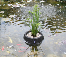 Floating Plant Baskets