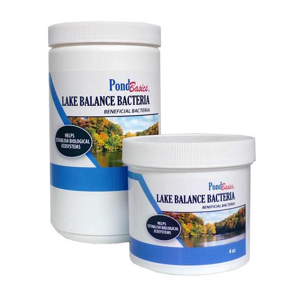 Lake Balance Bacteria