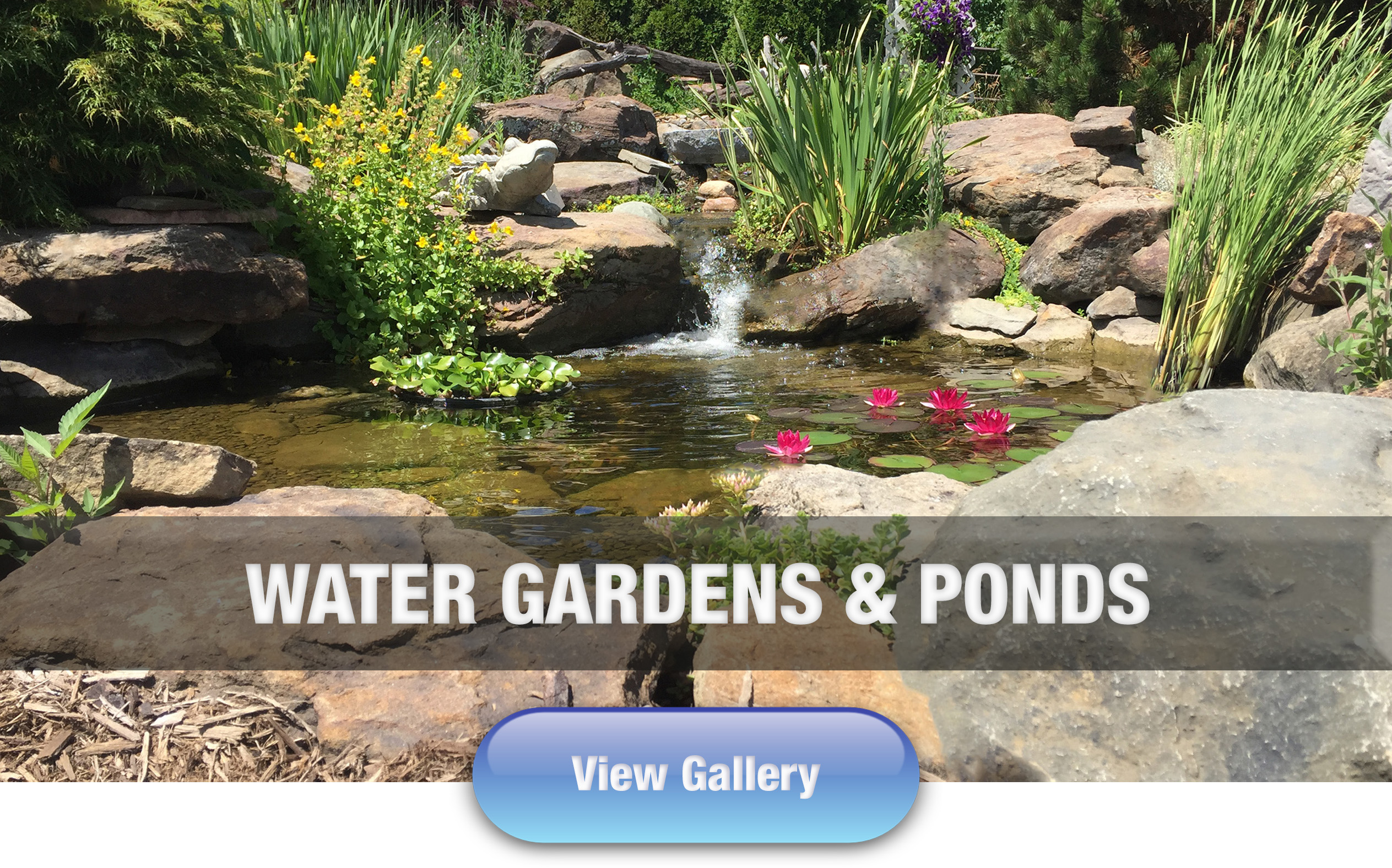 Hoffman's Water X Scapes Water Garden and Pond Work