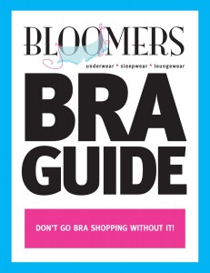 bra-guide-cover-copy-231x300.jpg