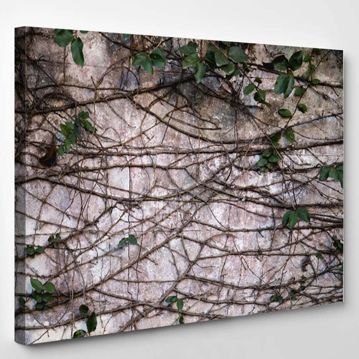 Beautiful Picture Used Do Background - Canvas Wall Art