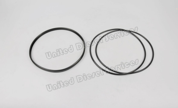 E205000BS | SEALING KIT FOR DL-20B CYLINDER LINER