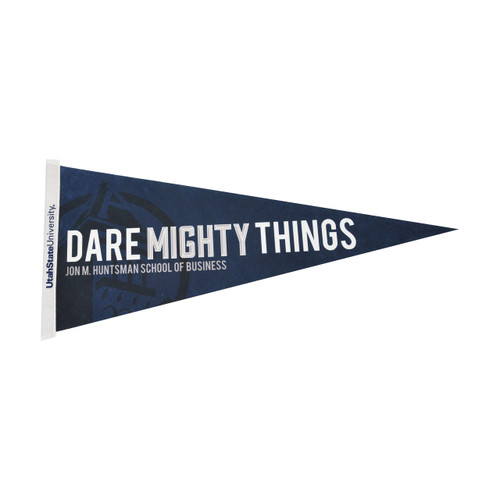 "Pennants - Large (12""x30"")"