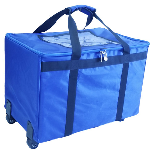 Durable fabric DS200 Carrying case safely transports device.
