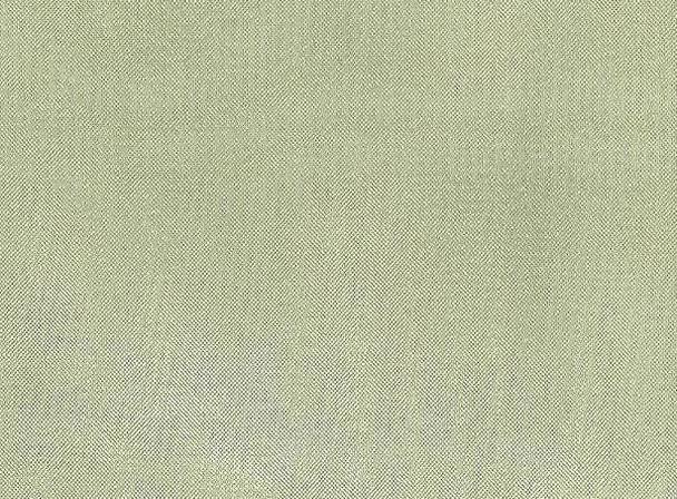 "Crystal Organza Apple Green Width 58/60"""