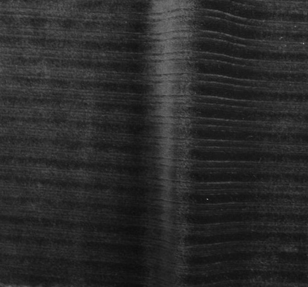"Steam Velour Drop Needle 8x3 Black Width 58/60"""