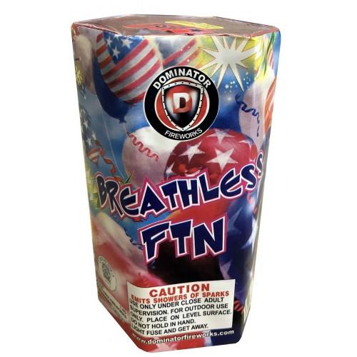 Wholesale Fireworks Breathless Fountain 48/1 Case