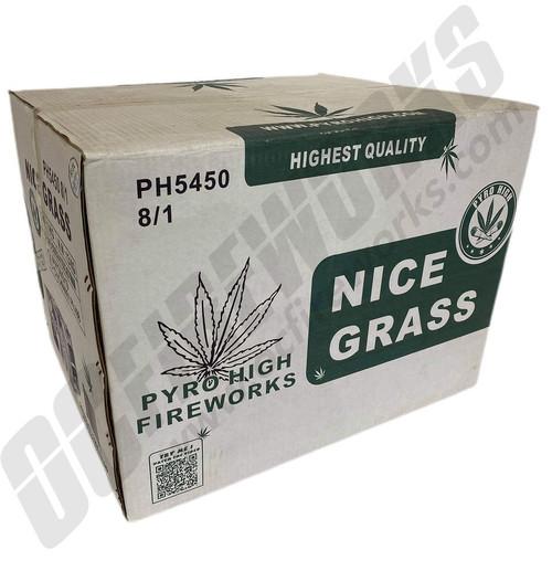 Wholesale Fireworks Nice Grass Case 8/1