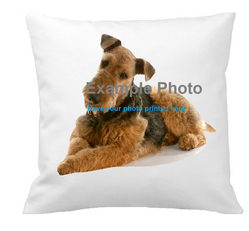 40cm Photo Cushion with your image