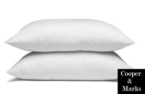 Cooper & Marks Twin Pack of Pillows Standard Size Pillows Cotton Case Polyester fibre fill