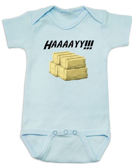 Haaaay! Baby Bodysuit, Hey Y'all, what does a gay cow say, farm humor, haaay y'all, blue