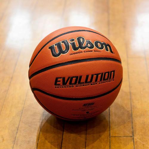 "Wilson Evolution Basketball Size 7 / 29.5"""