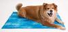 Coco Jojo Dog Cooling Mat