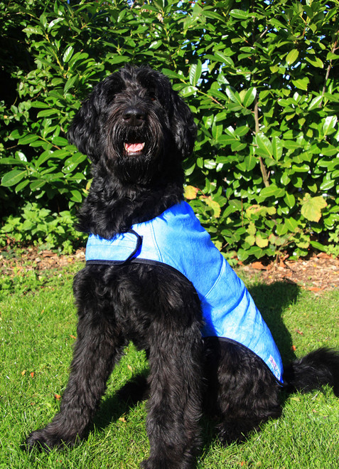Prestige Dog Cooling Coat