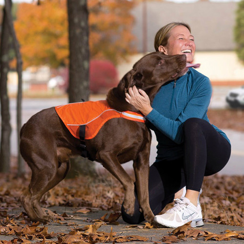Kurgo Reflect & Protect Dog Vest