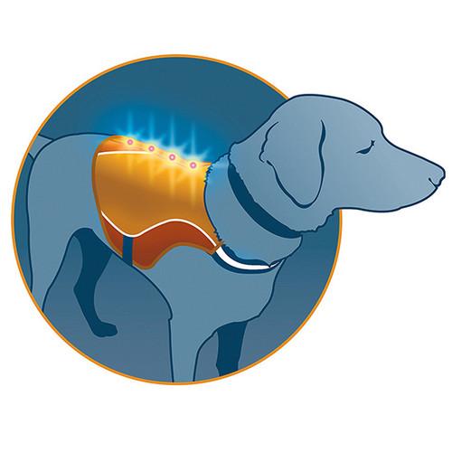 Kurgo Reflect & Protect Dog Vest