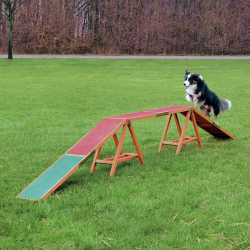 Dog Agility Dog Walk Ramp