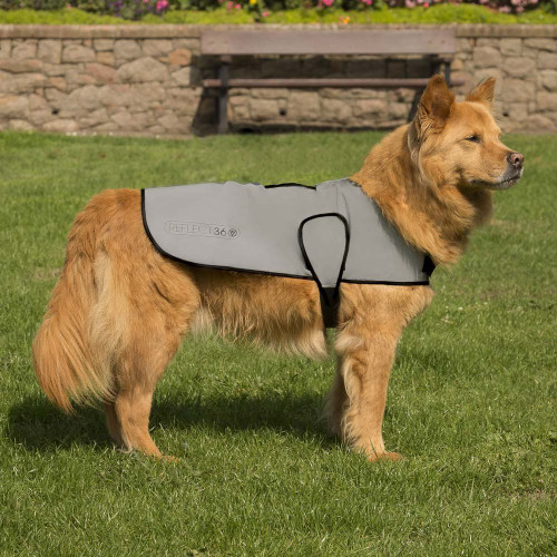 Proviz REFLECT360 Waterproof Dog Coat