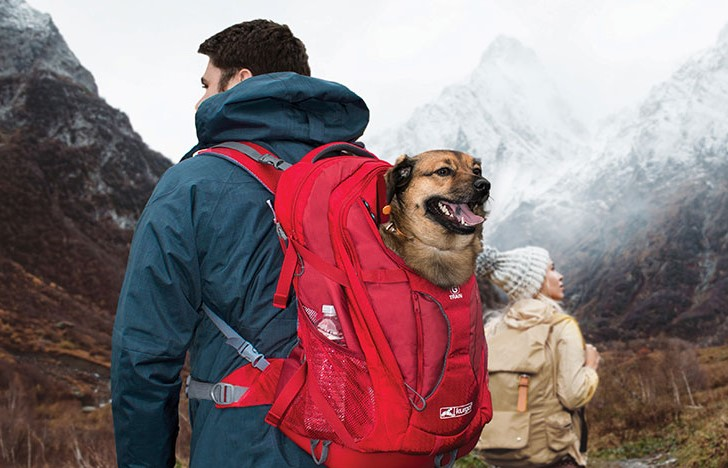 Kurgo G-Train Dog Back Pack