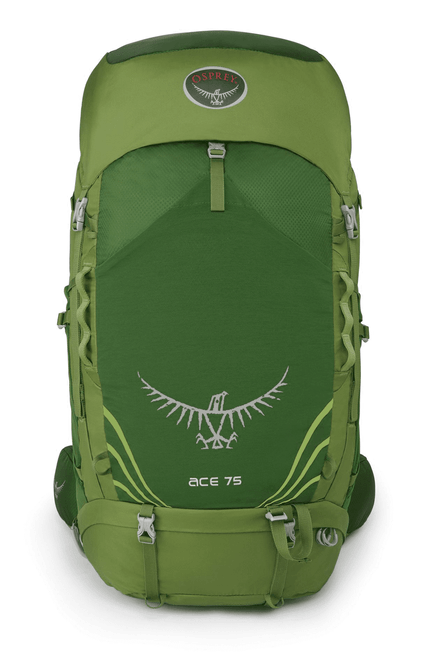 ACE 75 (Ages 10-17) Ivy Green
