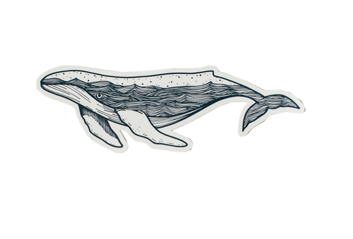 Humpback Whale Sticker