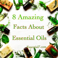 8 Surprising Facts About Essential Oils