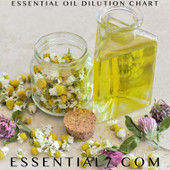 Essential Oil Dilution Guidelines