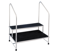 Step Stools, 2 Steps, 2 Hand Rails by Cleanroom World