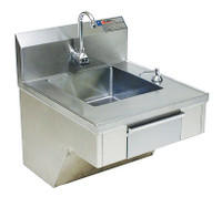 Hand Sinks For Physically Challenged, Eagle by Cleanroom World