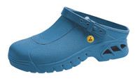 Cleanroom Autoclavable Shoes, Unisex, Size 36, Blue by Cleanroom World