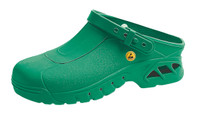 Cleanroom ESD Shoes, Autoclavable, Unisex, Size 36, Green by Cleanroom World