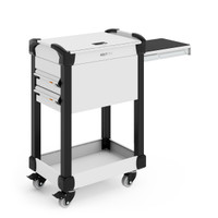 "MultiTek Cart, 2 Drawers, 2 Shelves with Mats (Bottom & Top), Locking Security Cover, Roll-out Shelf, 3"" Swivel Casters By Cleanroom World"