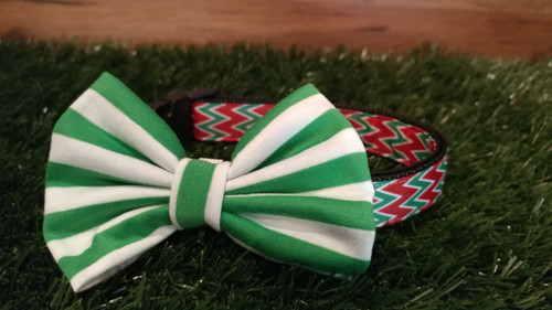 Green and White striped soft bow tie on a vibrant red and green chevron collar. Very fetching for the Festive Season