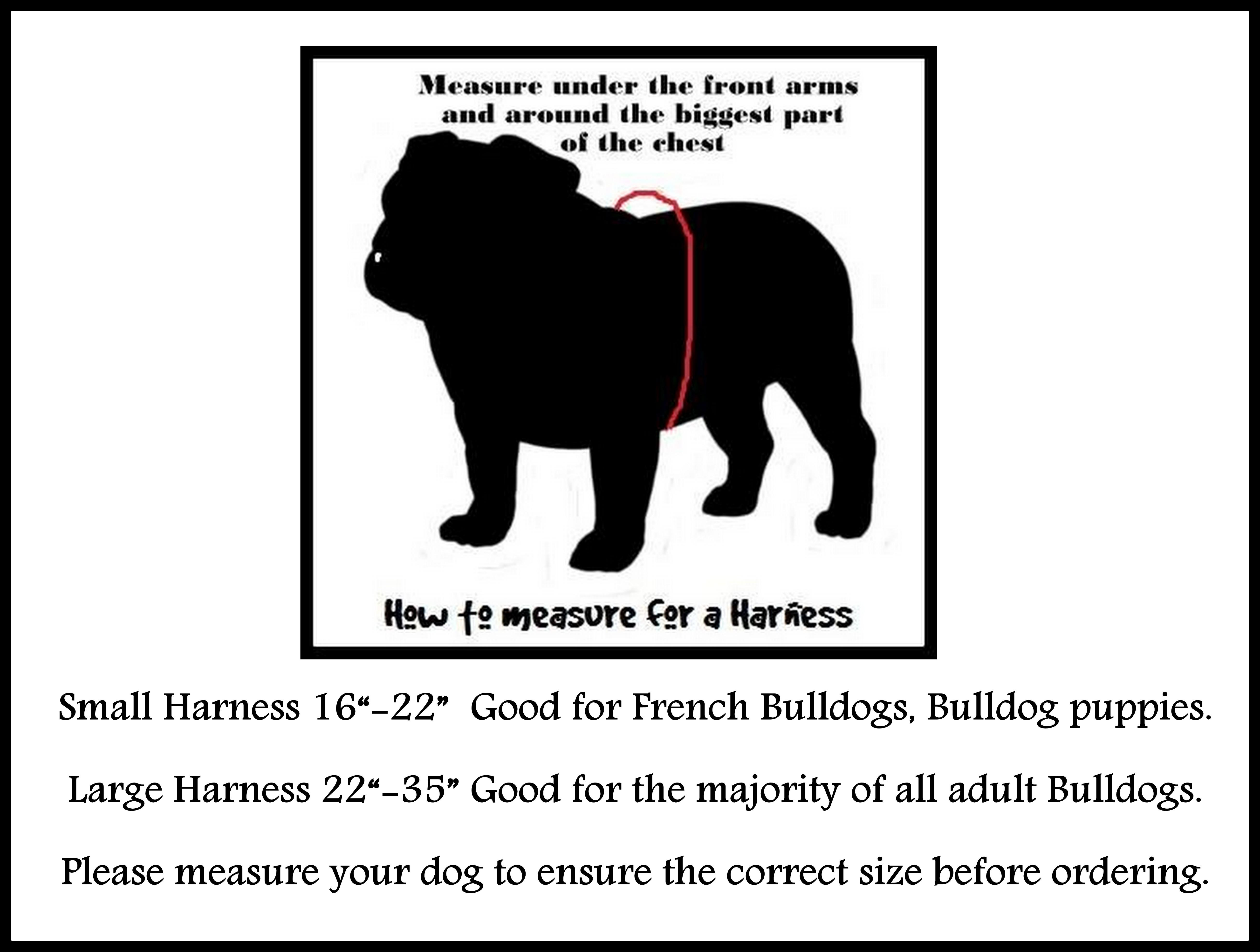 harness-measuring.jpg