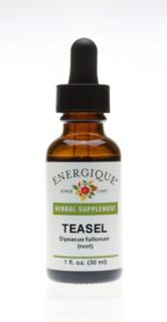 Energique TEASEL Root 1 oz  Herbal