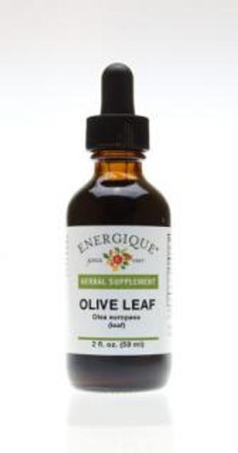 Energique OLIVE LEAF 2 oz 50% Herbal