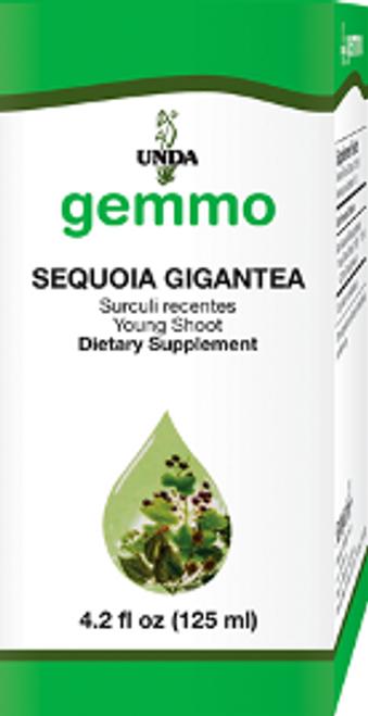 UNDA Gemmotherapy Sequoia Gigantea (Giant Sequoia young shoot) 4.2 fl oz (125 ml)