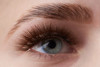 Get perfect eyebrows with the Lash Stuff brow lamination kit.