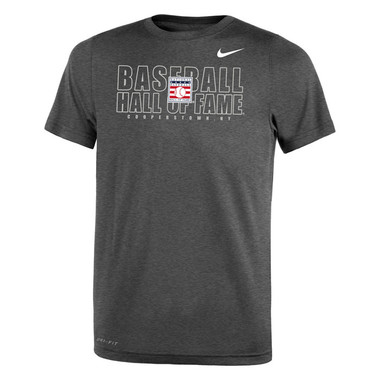 Youth Nike Baseball Hall of Fame Official Logo Grey Dri-Fit Legend 2.0 T-Shirt
