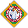 Unisex Teambrown Kansas City Monarchs Champions Collection Longsleeve Baseball Shirt